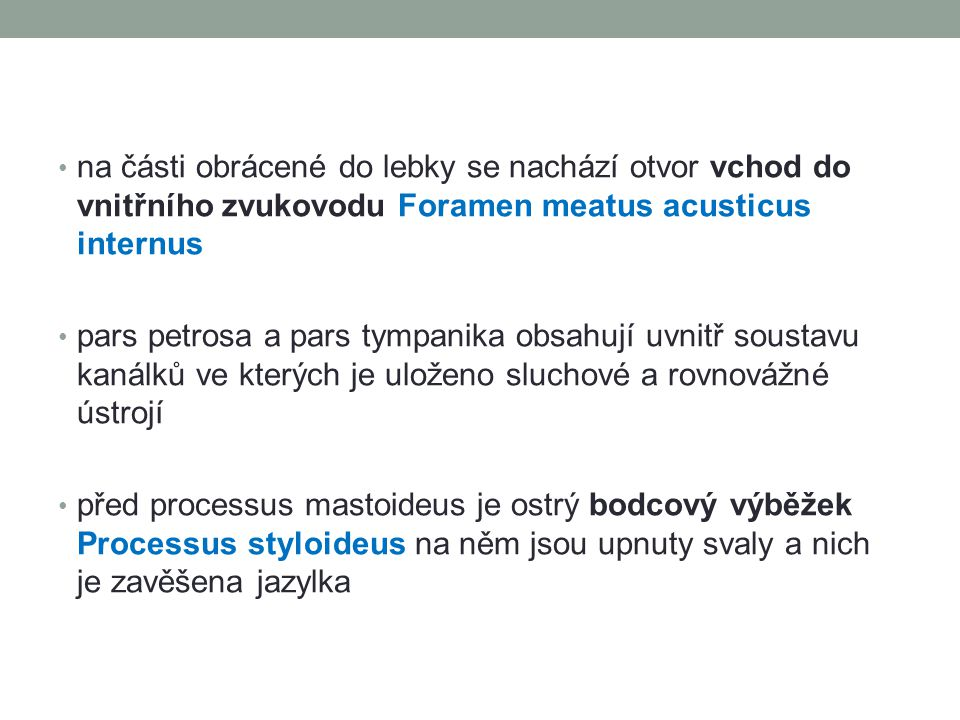 na části obrácené do lebky se nachází otvor vchod do vnitřního zvukovodu Foramen meatus acusticus internus pars petrosa a pars tympanika obsahují uvni