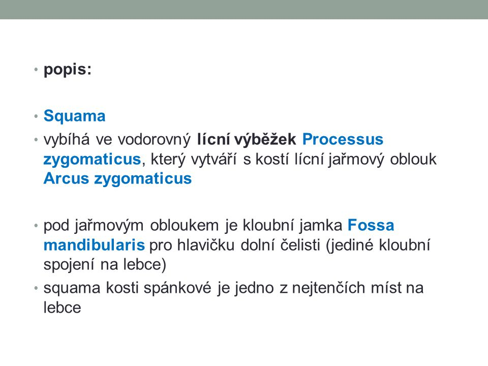 popis: Squama vybíhá ve vodorovný lícní výběžek Processus zygomaticus, který vytváří s kostí lícní jařmový oblouk Arcus zygomaticus pod jařmovým oblou
