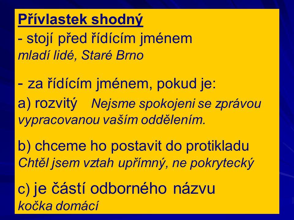 Přívlastek shodný - stojí před řídícím jménem mladí lidé, Staré Brno - za řídícím jménem, pokud je: a) rozvitý Nejsme spokojeni se zprávou vypracovano