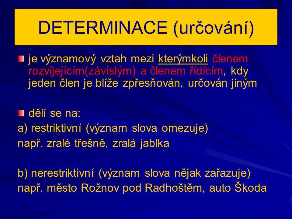 Druhy determinace (určování) Druhy determinace (určování) a) předmětová např.
