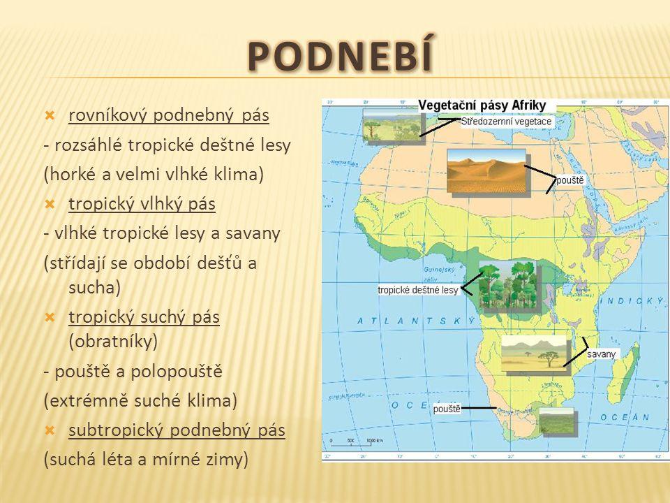  rovníkový podnebný pás - rozsáhlé tropické deštné lesy (horké a velmi vlhké klima)  tropický vlhký pás - vlhké tropické lesy a savany (střídají se období dešťů a sucha)  tropický suchý pás (obratníky) - pouště a polopouště (extrémně suché klima)  subtropický podnebný pás (suchá léta a mírné zimy)