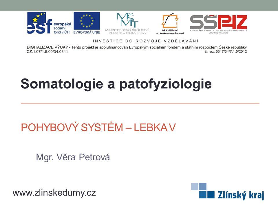 POHYBOVÝ SYSTÉM – LEBKA V Mgr. Věra Petrová www.zlinskedumy.cz Somatologie a patofyziologie