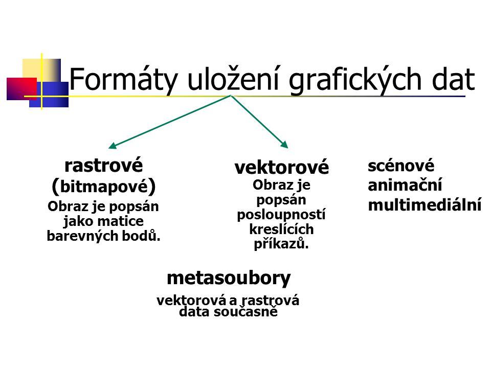Formáty uložení grafických dat rastrové ( bitmapové ) Obraz je popsán jako matice barevných bodů.