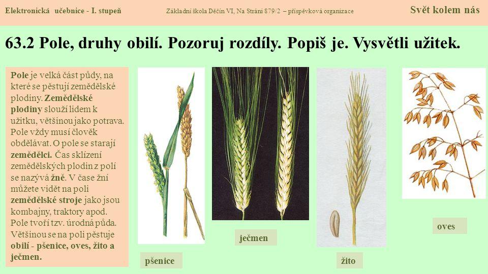 63.3 Další zemědělské plodiny Elektronická učebnice - I.
