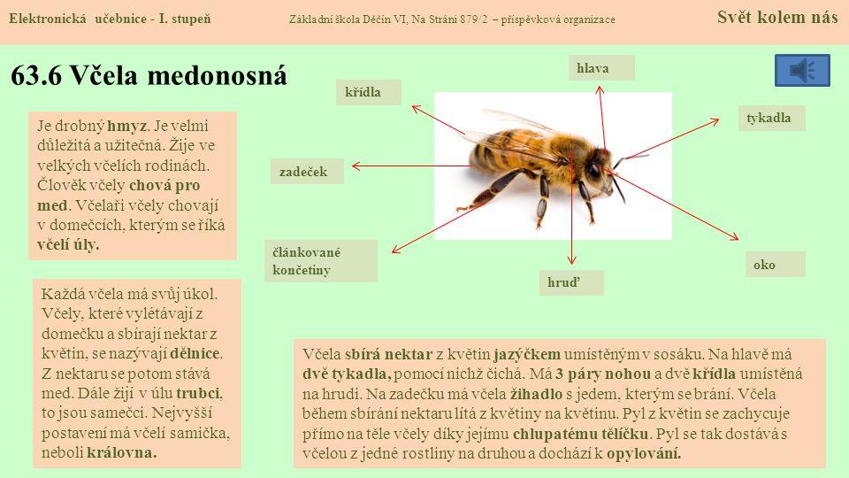 63.7 Zvířata na poli Elektronická učebnice - I.