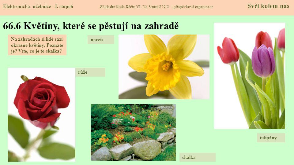 66.7 Hmyz na zahradě Elektronická učebnice - I.