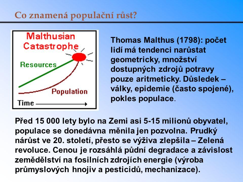 Co znamená populační růst.