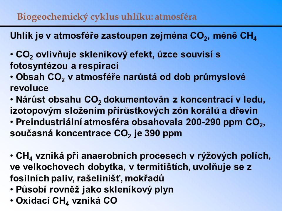 Biogeochemický cyklus uhlíku: atmosféra Uhlík je v atmosféře zastoupen zejména CO 2, méně CH 4 CO 2 ovlivňuje skleníkový efekt, úzce souvisí s fotosyn