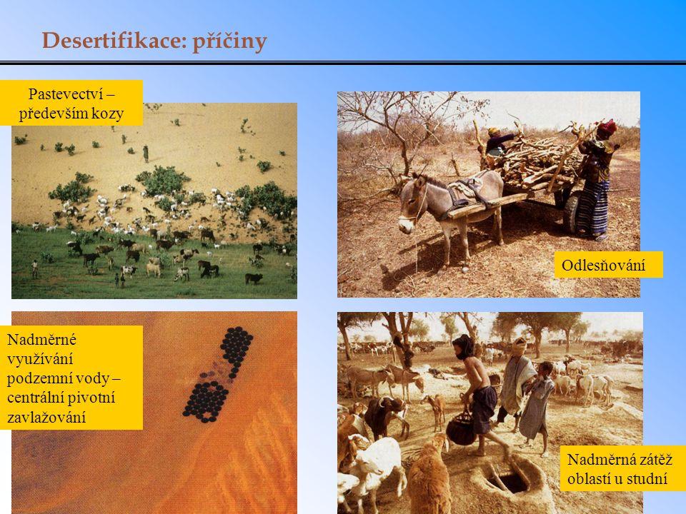 Desertifikace: příčiny Odlesňování Nadměrné využívání podzemní vody – centrální pivotní zavlažování Nadměrná zátěž oblastí u studní Pastevectví – před