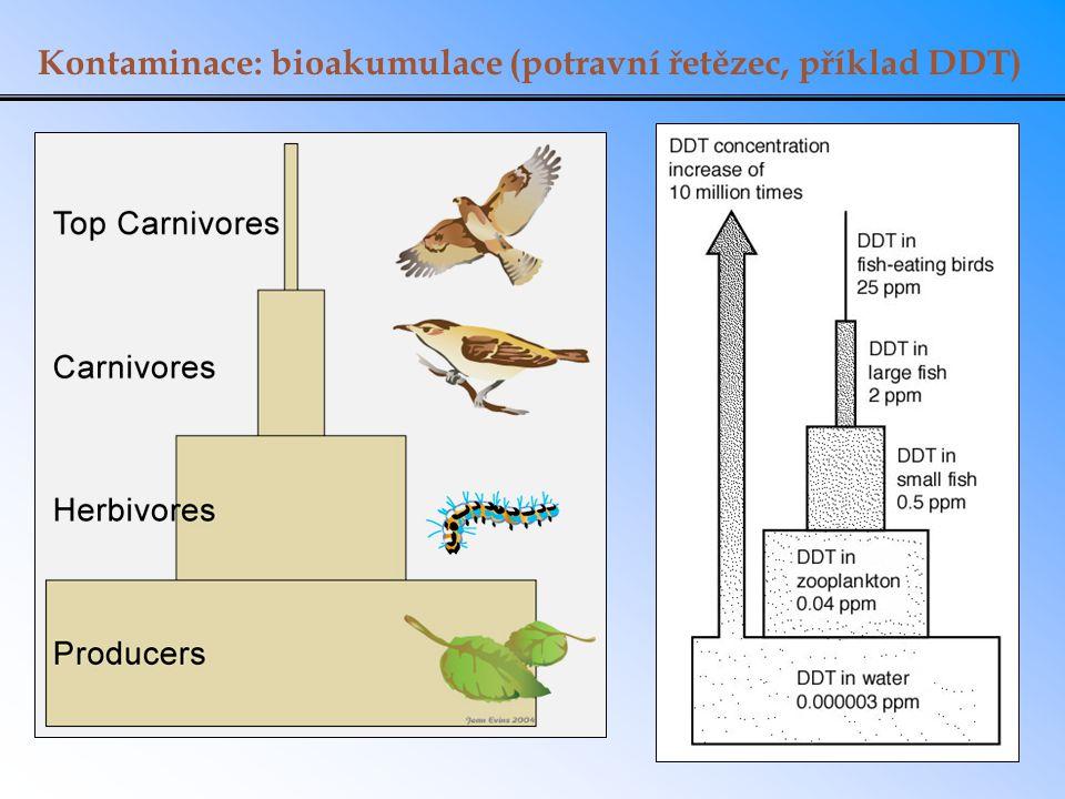 Kontaminace: bioakumulace (potravní řetězec, příklad DDT)