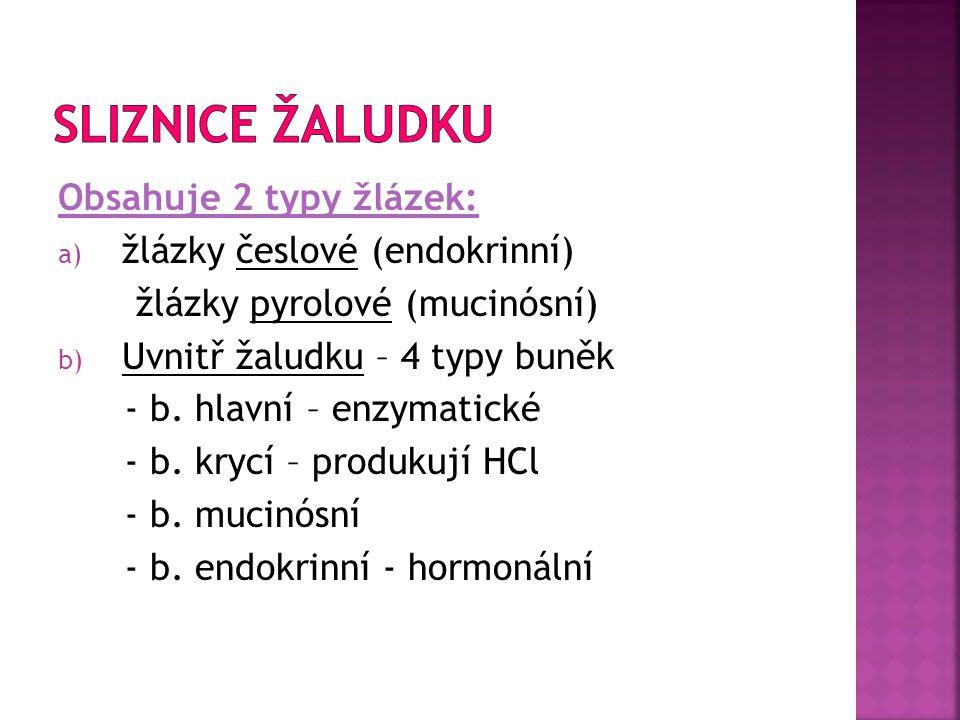 Obsahuje 2 typy žlázek: a) žlázky česlové (endokrinní) žlázky pyrolové (mucinósní) b) Uvnitř žaludku – 4 typy buněk - b. hlavní – enzymatické - b. kry