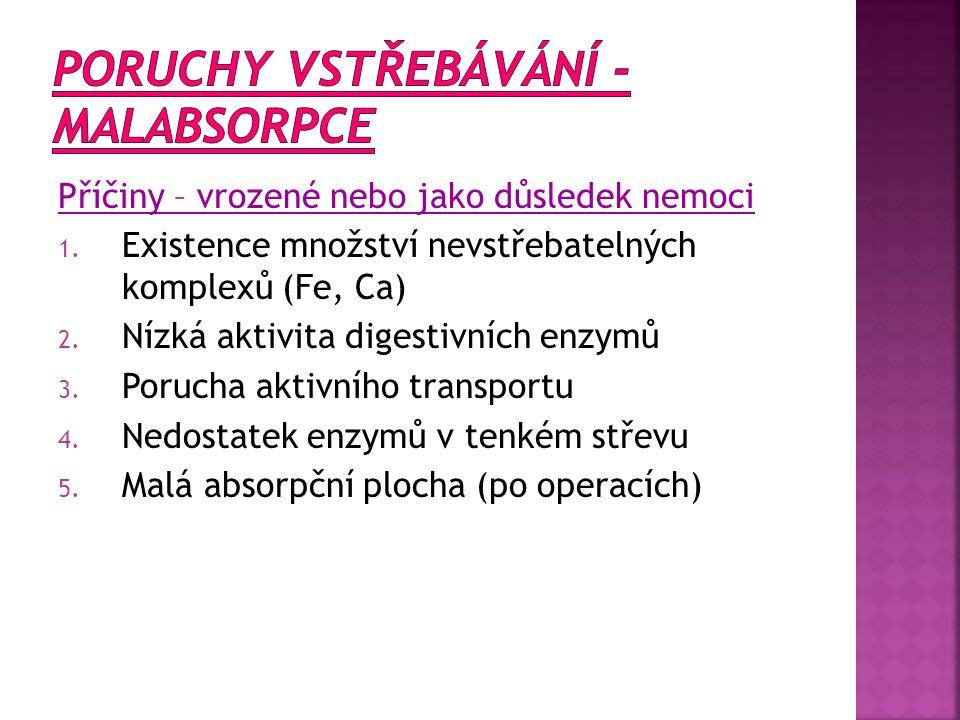 - tvořeno tzv.HAUSTRY FUNKCE: 1. Dokončující se proces vstřebávání (vzestupný tračník) 2.