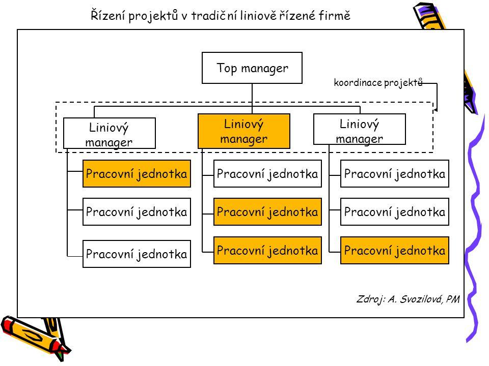 Řízení projektů v projektově řízené společnosti koordinace projektů Zdroj: A.