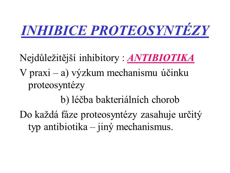 INHIBICE PROTEOSYNTÉZY Nejdůležitější inhibitory : ANTIBIOTIKA V praxi – a) výzkum mechanismu účinku proteosyntézy b) léčba bakteriálních chorob Do ka