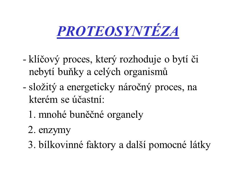 PROTEOSYNTÉZA - klíčový proces, který rozhoduje o bytí či nebytí buňky a celých organismů - složitý a energeticky náročný proces, na kterém se účastní