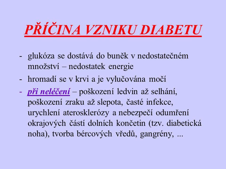 PŘÍČINA VZNIKU DIABETU -glukóza se dostává do buněk v nedostatečném množství – nedostatek energie -hromadí se v krvi a je vylučována močí -při neléčení – poškození ledvin až selhání, poškození zraku až slepota, časté infekce, urychlení aterosklerózy a nebezpečí odumření okrajových částí dolních končetin (tzv.