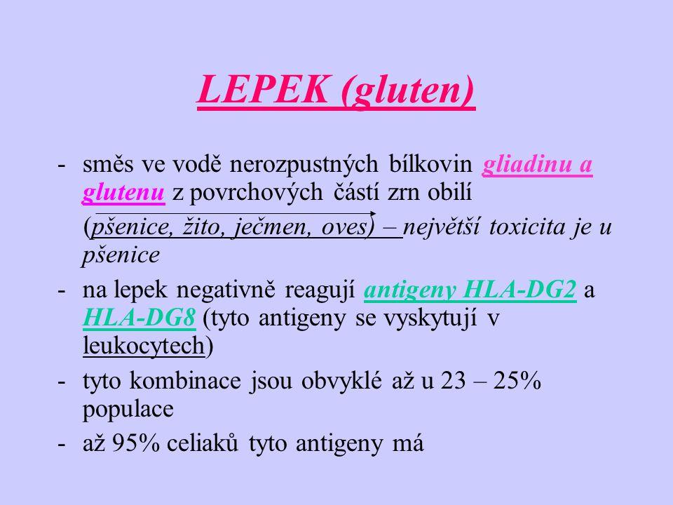 LEPEK (gluten) -směs ve vodě nerozpustných bílkovin gliadinu a glutenu z povrchových částí zrn obilí (pšenice, žito, ječmen, oves) – největší toxicita je u pšenice -na lepek negativně reagují antigeny HLA-DG2 a HLA-DG8 (tyto antigeny se vyskytují v leukocytech) -tyto kombinace jsou obvyklé až u 23 – 25% populace -až 95% celiaků tyto antigeny má