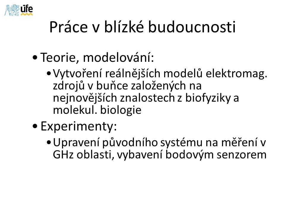Práce v blízké budoucnosti Teorie, modelování: Vytvoření reálnějších modelů elektromag.