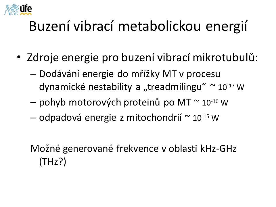 "Buzení vibrací metabolickou energií Zdroje energie pro buzení vibrací mikrotubulů: – Dodávání energie do mřížky MT v procesu dynamické nestability a ""treadmilingu ~ 10 -17 W – pohyb motorových proteinů po MT ~ 10 -16 W – odpadová energie z mitochondrií ~ 10 -15 W Možné generované frekvence v oblasti kHz-GHz (THz )"