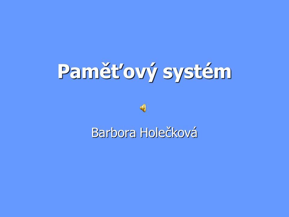 Paměťový systém Barbora Holečková
