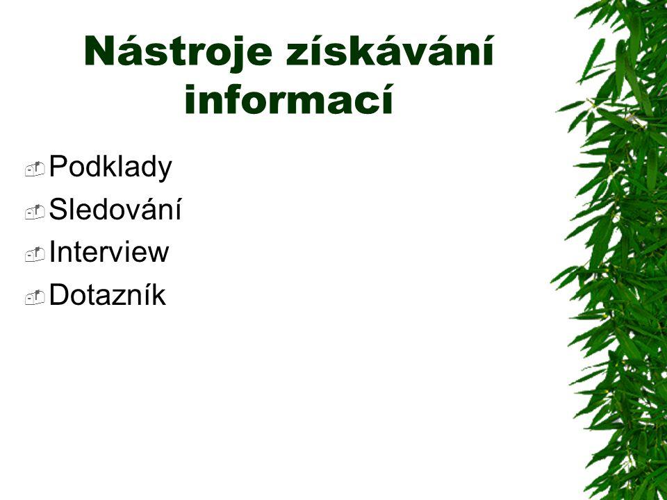 Nástroje získávání informací  Podklady  Sledování  Interview  Dotazník