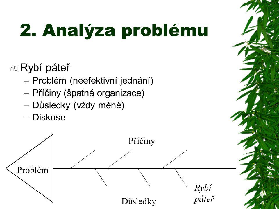 2. Analýza problému  Rybí páteř –Problém (neefektivní jednání) –Příčiny (špatná organizace) –Důsledky (vždy méně) –Diskuse Rybí páteř Důsledky Příčin