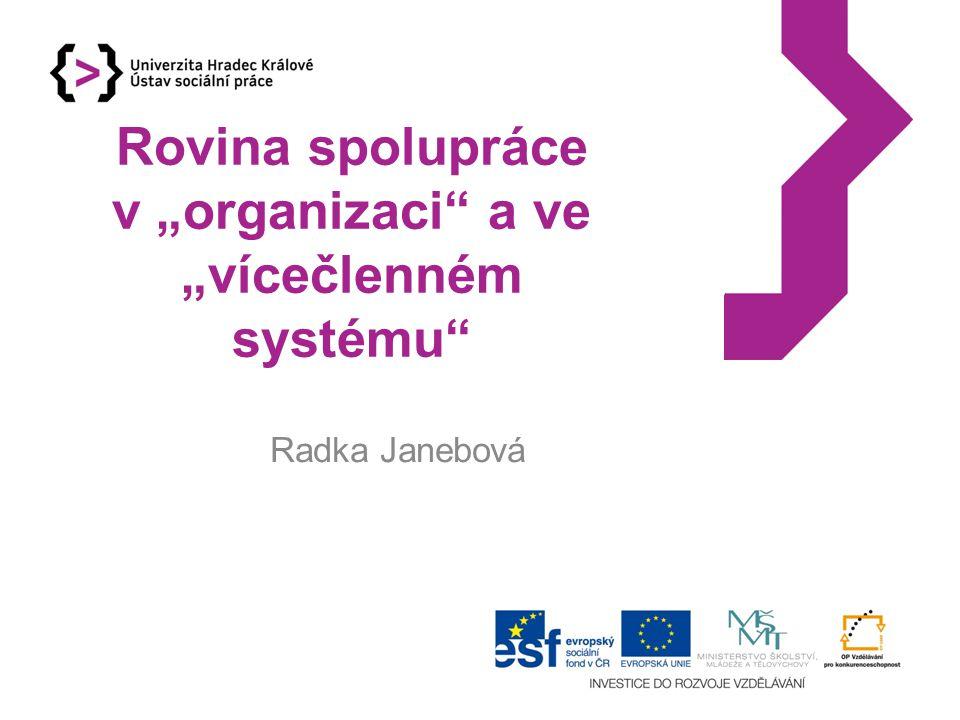 """Rovina spolupráce v """"organizaci"""" a ve """"vícečlenném systému"""" Radka Janebová"""