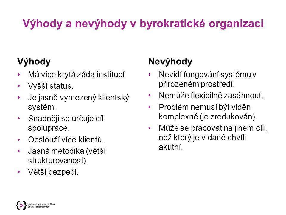 Výhody a nevýhody v byrokratické organizaci Výhody Má více krytá záda institucí. Vyšší status. Je jasně vymezený klientský systém. Snadněji se určuje