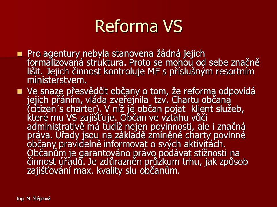 Ing.M. Šlégrová Reforma VS Pro agentury nebyla stanovena žádná jejich formalizovaná struktura.