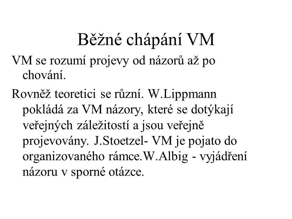 Běžné chápání VM VM se rozumí projevy od názorů až po chování.
