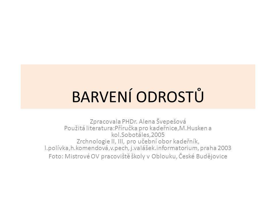 BARVENÍ ODROSTŮ Zpracovala PHDr.