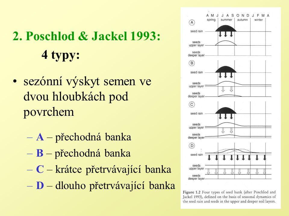 Klasifikace semenné banky 4 typy: podle sezónního výskytu semen 2 typy přechodné a 2 typy trvalé banky nutno sbírat data během celého roku, znát sezónní dynamiku 1.