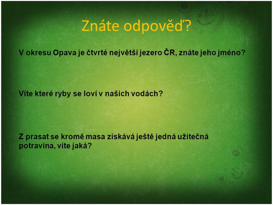 Znáte odpověď? V okresu Opava je čtvrté největší jezero ČR, znáte jeho jméno? Víte které ryby se loví v našich vodách? Z prasat se kromě masa získává