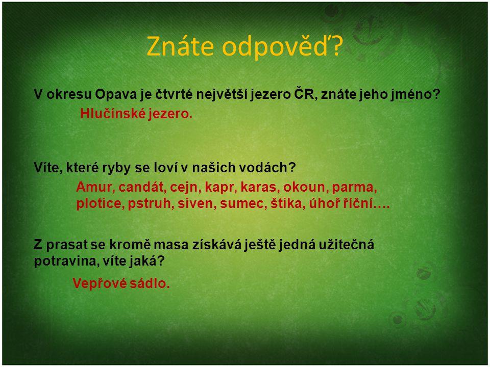 Znáte odpověď? V okresu Opava je čtvrté největší jezero ČR, znáte jeho jméno? Víte, které ryby se loví v našich vodách? Z prasat se kromě masa získává