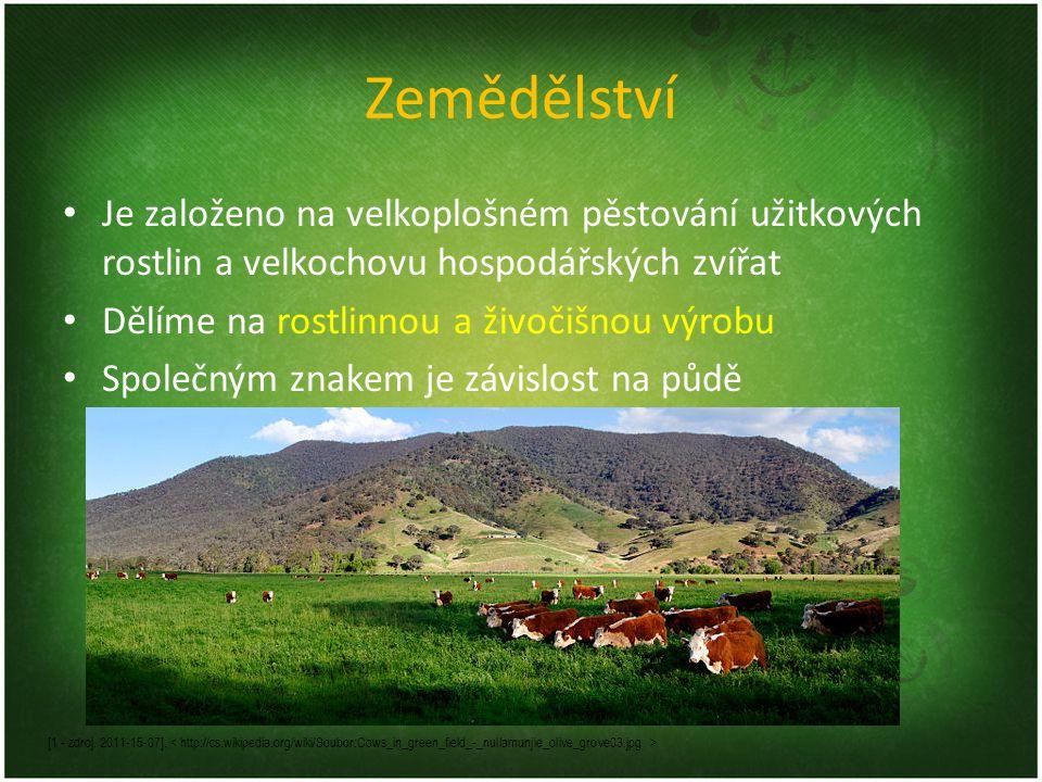 Zemědělství Je založeno na velkoplošném pěstování užitkových rostlin a velkochovu hospodářských zvířat Dělíme na rostlinnou a živočišnou výrobu Společným znakem je závislost na půdě [1 - zdroj.