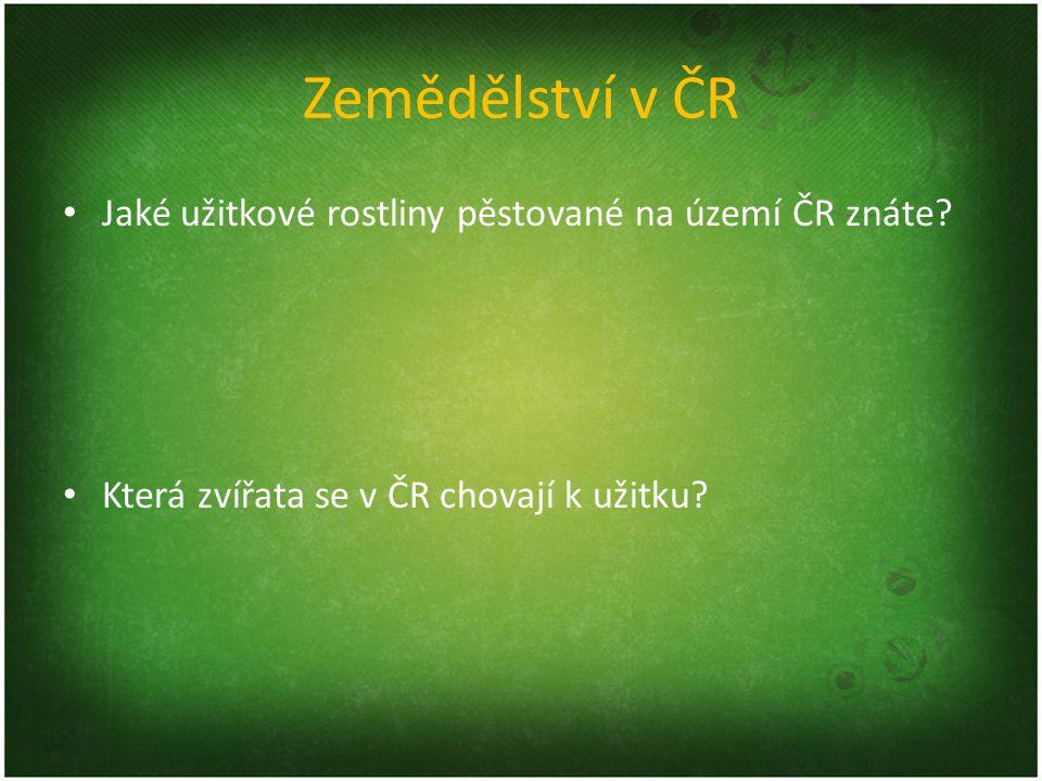 Zemědělství v ČR Jaké užitkové rostliny pěstované na území ČR znáte? Která zvířata se v ČR chovají k užitku?