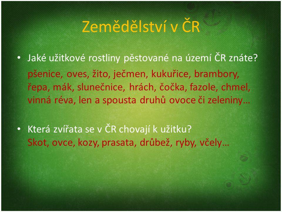 Zemědělství v ČR Jaké užitkové rostliny pěstované na území ČR znáte.
