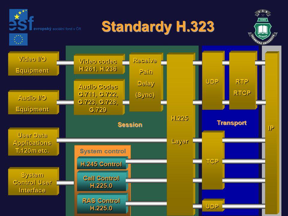Video I/O Equipment Audio I/O Equipment User Data Applications T.120m etc. System Control User Interface Video codec H.261, H.236 Audio Codec G.711, G