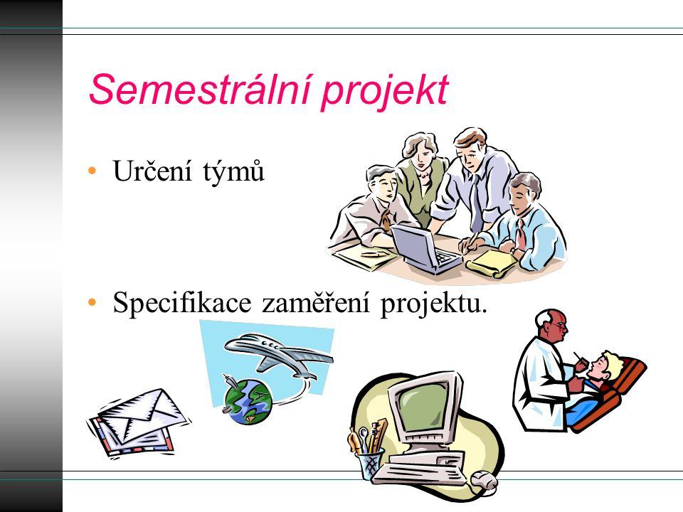 Semestrální projekt Určení týmů Specifikace zaměření projektu.