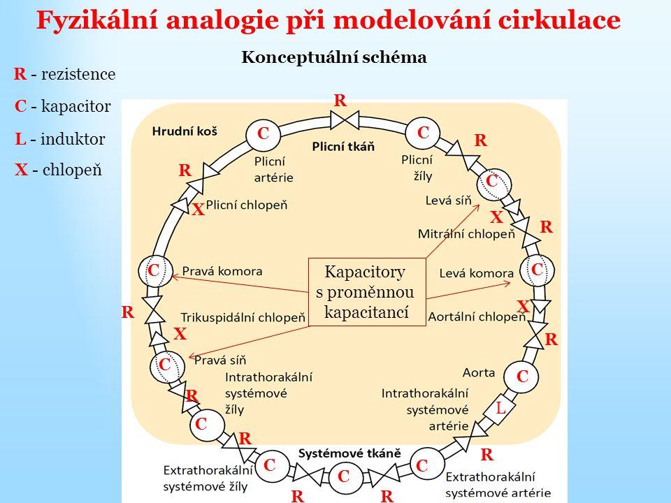 Fyzikální analogie při modelování cirkulace Konceptuální schéma R R R R RR R R R R R R - rezistence C - kapacitor C C C C C C C C C C C Kapacitory s proměnnou kapacitancí L - induktor L X - chlopeň X X X X
