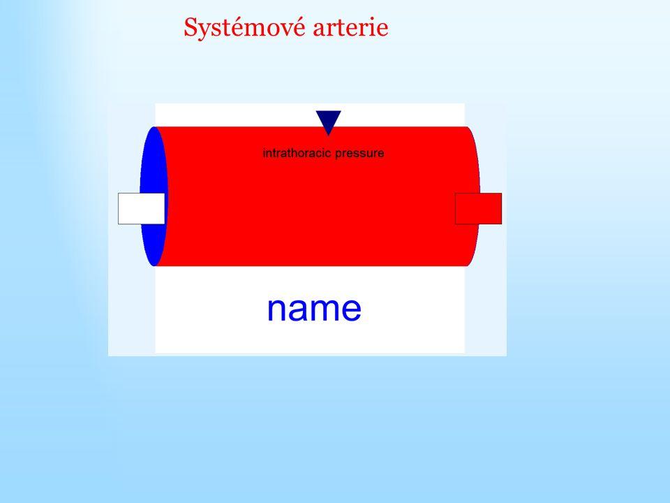 Systémové arterie