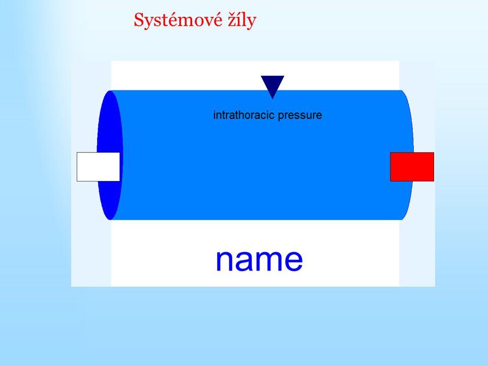 Systémové žíly