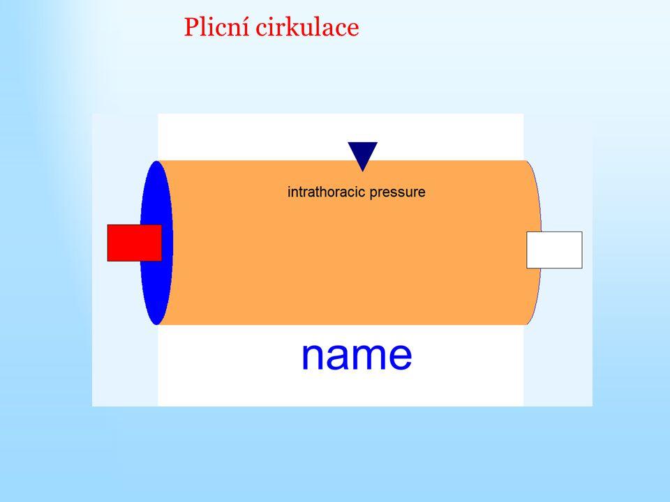 Plicní cirkulace