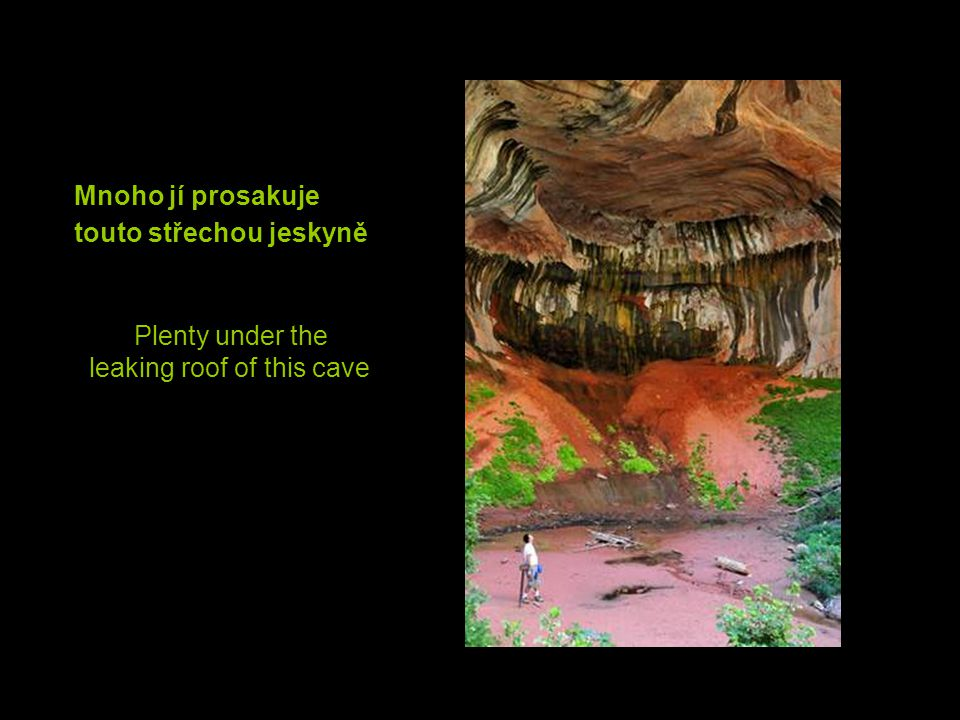There must be water under the dry soil Pod suchou půdou musí být voda