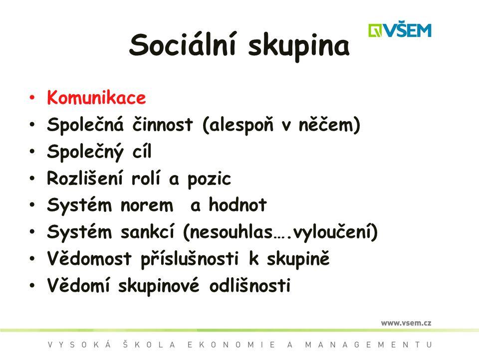 Sociální skupina Komunikace Společná činnost (alespoň v něčem) Společný cíl Rozlišení rolí a pozic Systém norem a hodnot Systém sankcí (nesouhlas….vyloučení) Vědomost příslušnosti k skupině Vědomí skupinové odlišnosti