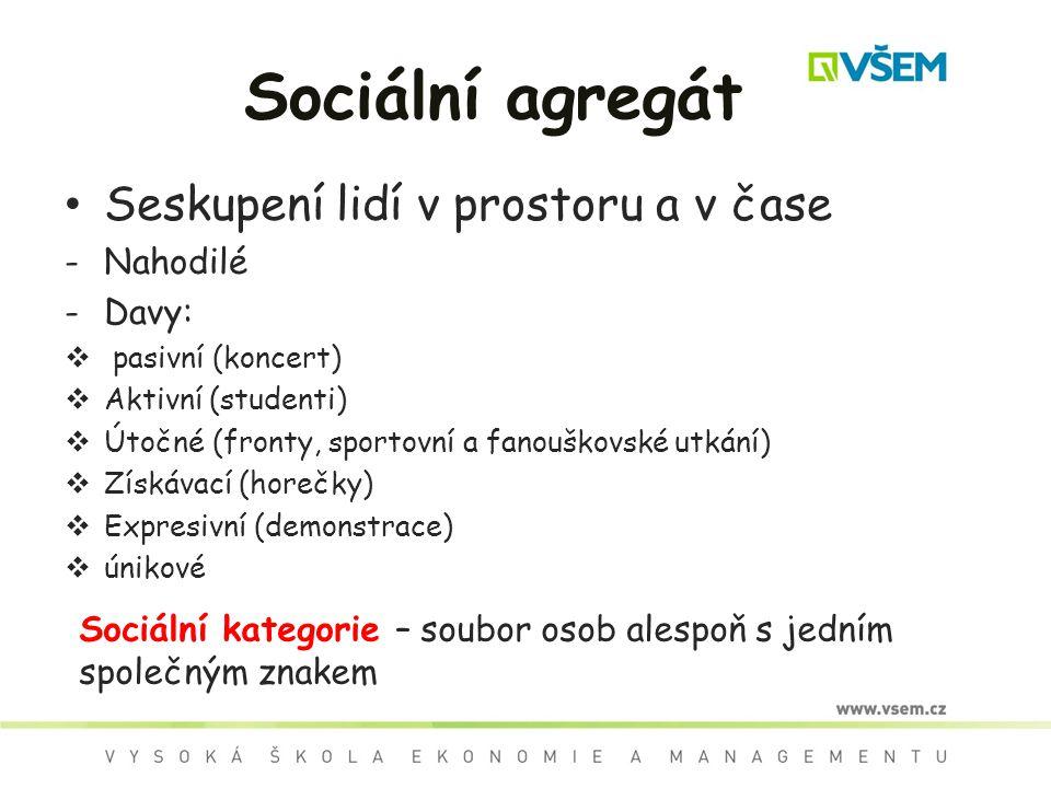 Sociální agregát Seskupení lidí v prostoru a v čase -Nahodilé -Davy:  pasivní (koncert)  Aktivní (studenti)  Útočné (fronty, sportovní a fanouškovs