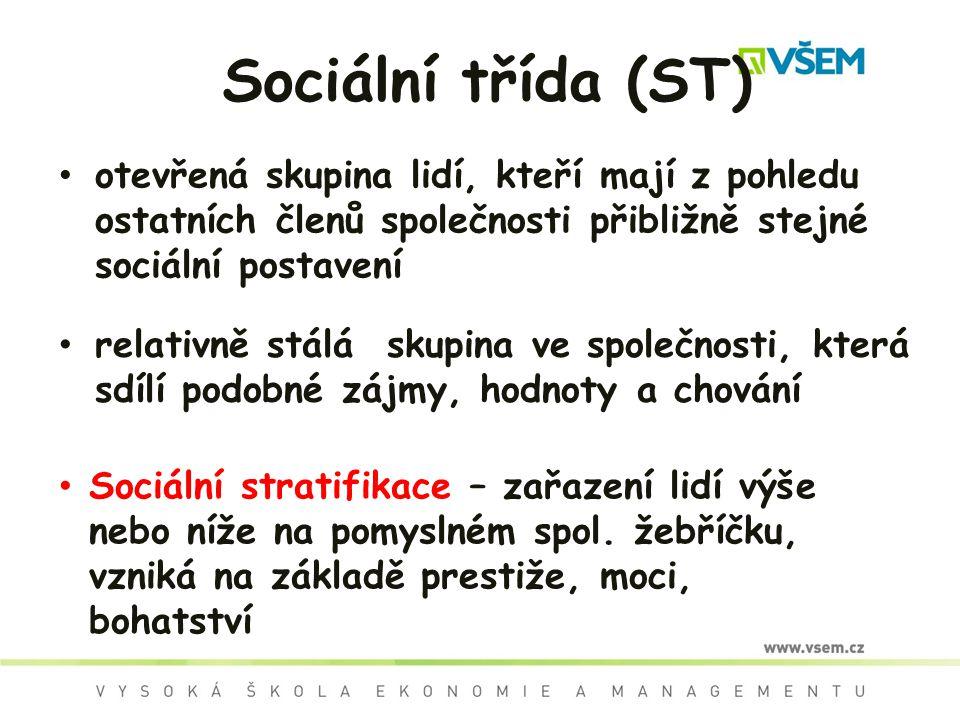 Sociální třída (ST) otevřená skupina lidí, kteří mají z pohledu ostatních členů společnosti přibližně stejné sociální postavení relativně stálá skupin