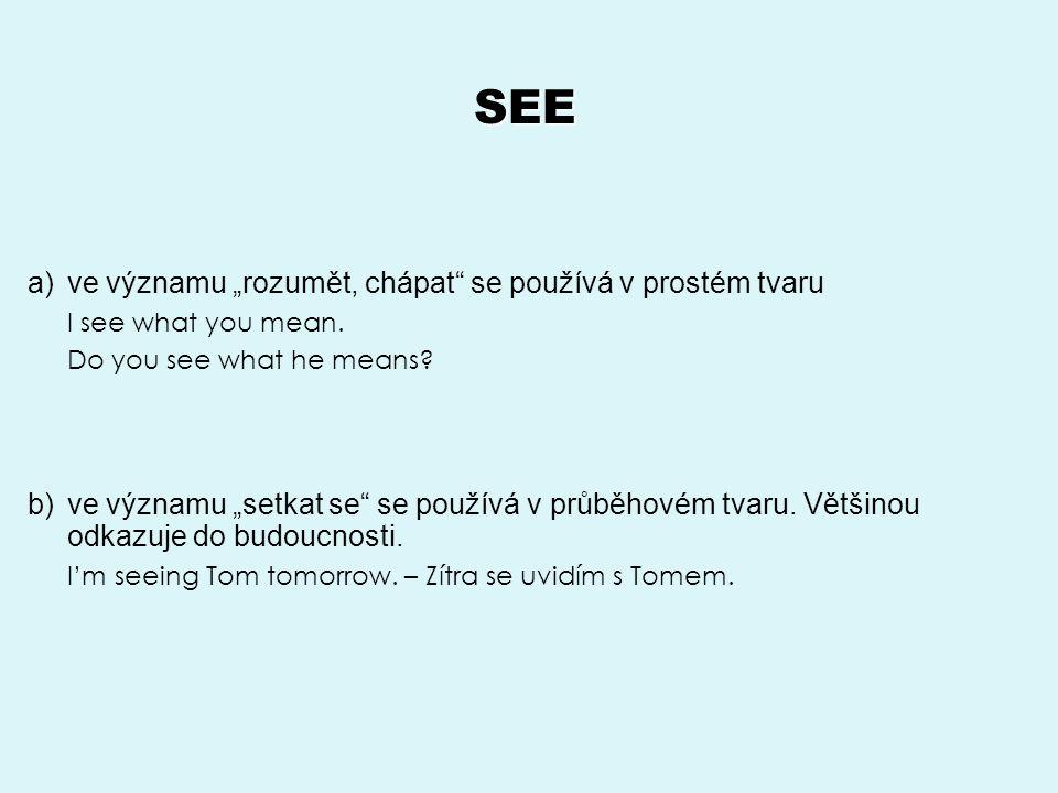 """SEE a)ve významu """"rozumět, chápat se používá v prostém tvaru I see what you mean."""