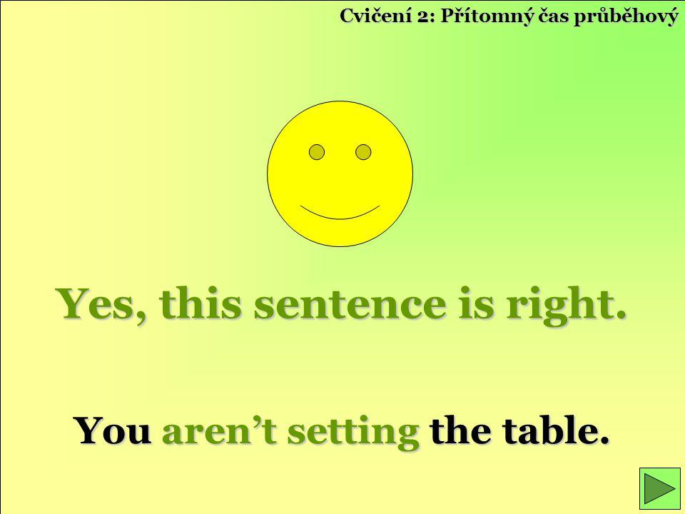 Yes, this sentence is right. You aren't setting the table. Cvičení 2: Přítomný čas průběhový