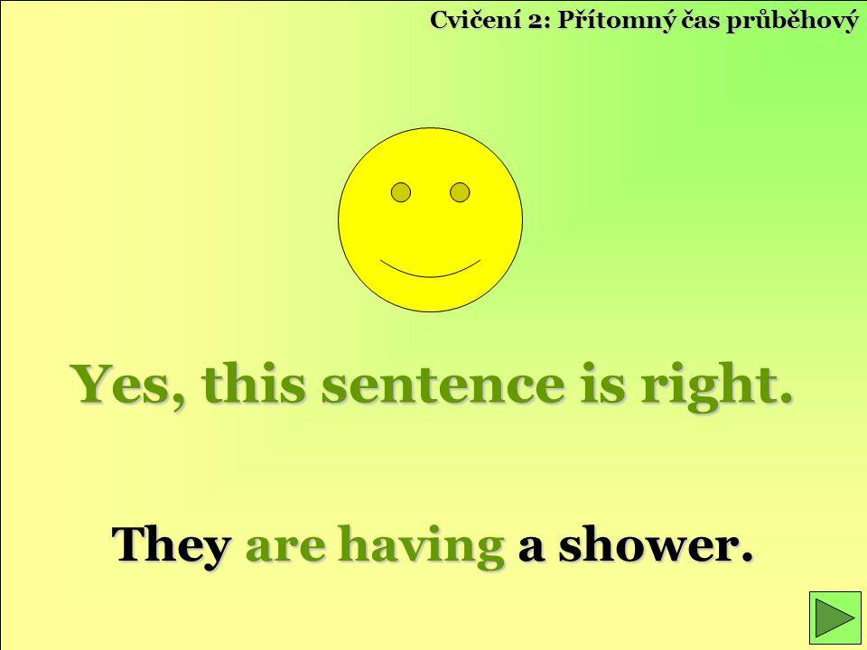 Yes, this sentence is right. They are having a shower. Cvičení 2: Přítomný čas průběhový